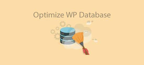 افزونه بهینه سازی پایگاه داده وردپرس