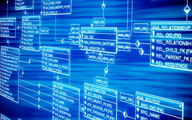 پایگاه داده وردپرس چیست