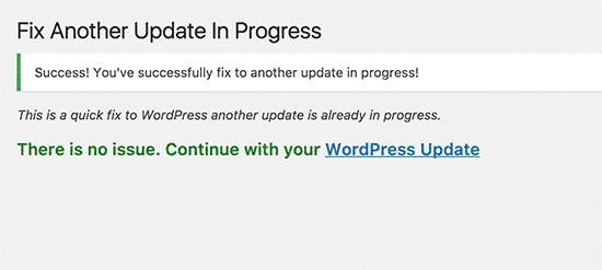 نتیجه موفق کار افزونه Fix Another Update In Progress