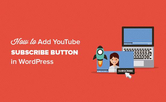 افزودن ابزار دنبال کردن در یوتیوب در وردپرس