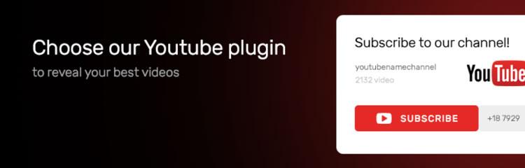 افزونه TM YouTube Subscribe