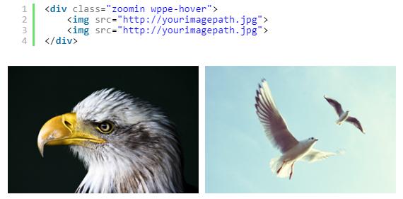 کد کامل به همراه کلاس برای افکت عکس