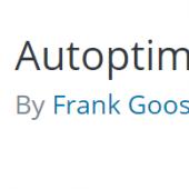 حجم صفحات سایت خود را با افزونه Autoptimize کم کنید!