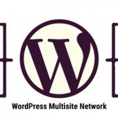 آموزش جامع میزبانی دامنه های مختلف روی وردپرس شبکه