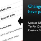 افزونه Velvet Blues Update URLs برای تغییر دامین وردپرس