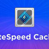 با LiteSpeed Cache، نیازی به استفاده از افزونه کش دیگری نیست